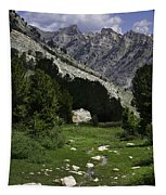 Path Of Life Ruby Mountains Stock Trail Tapestry