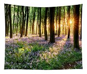 Sunrise Path Through Bluebell Woods Tapestry
