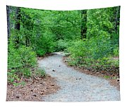 Path Through The Woods Tapestry