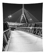 Path To The Zakim Bridge Bw Tapestry