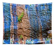 Pattern On Wet Canyon Wall From River Walk In Zion Canyon In Zion National Park-utah  Tapestry