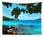 Peaceful Beach St. Thomas Tapestry