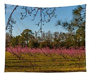 Peach Tree A Bloom Tapestry