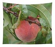 Peach For Harvest   # Tapestry