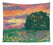 Peachy Sunset Tapestry