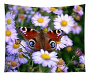 Peacock Butterfly Perched On The Daisies Tapestry