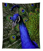 Peacock Head And Tail Tapestry