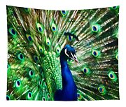 Peacock - Impressions Tapestry