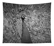 Peacock In Black And White Tapestry