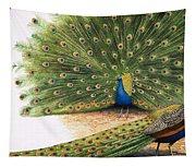 Peacocks Tapestry