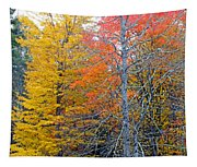 Peak And Past Foliage Tapestry