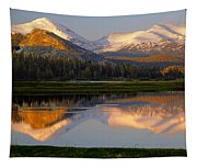 6m6530-a-peaks Reflected Touolumne Meadows  Tapestry