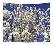 Pear Tree Blossoms In Spring Tapestry