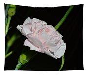 Pearl Spotlight Tapestry