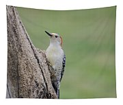 Pecker Tapestry