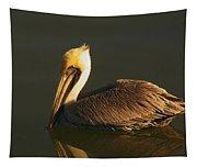 Pelican At Dark Tapestry