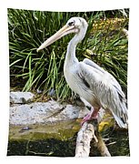 Pelican At Rest Tapestry