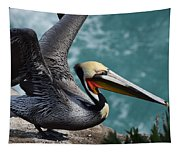 Pelican Lift Off Tapestry