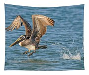 Pelican Taking Off Tapestry