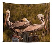 Pelicans On Watch Tapestry