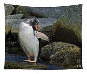 Penguin Ballet... Tapestry