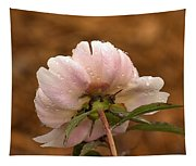 Peony After The Rain Tapestry