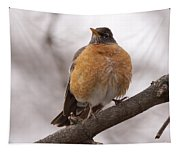 Perched Robin Tapestry
