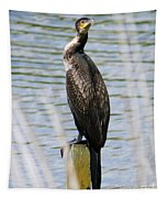 Perching Cormorant Tapestry