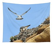 Peregrine Falcons - 2 Tapestry