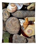 Petoskey Stones Ll Tapestry