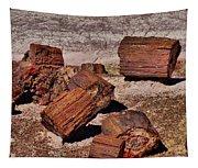 Petrified Wood Tapestry