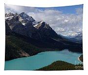 Peyto Lake Canadian Rockies Tapestry
