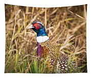 Pheasant Portrait Tapestry