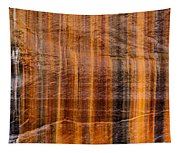 Pictured Rocks Vibrant Layers Tapestry