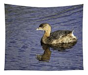 Pied-billed Grebe Tapestry