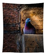 Pigeon Of The City Tapestry
