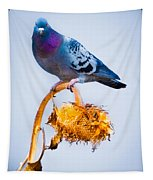 Pigeon On Sunflower Tapestry