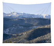 Pike National Forest In Snow Tapestry
