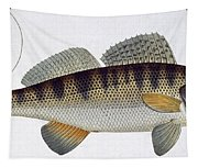 Pike Perch Tapestry