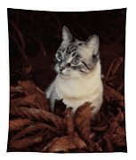 Rustic Pile Of Leaves And Cat Tapestry