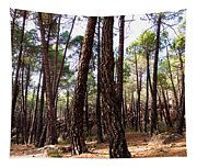 Pine Forest Tapestry
