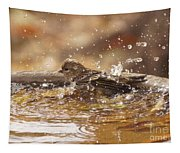 Pine Siskin Tapestry