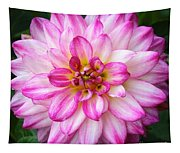 Pink And White Dahlia Square Tapestry