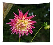 Pink And Yellow Tapestry