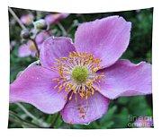 Pink Anemone Flower Tapestry