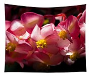 Pink Cascade Tapestry