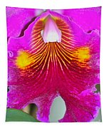 Pink Cattelaya Orchid Tapestry