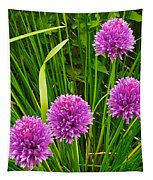 Pink Chives In Mackinac Island-michigan Tapestry