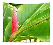 Pink Cone Ginger Bud Tapestry