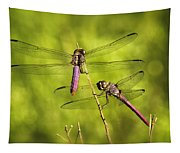 Pink Dragonflies Tapestry